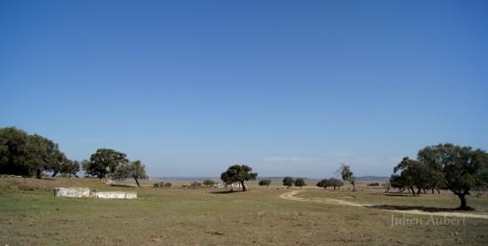 Finca gaditane sur laquelle le sang Nuñez coula depuis 1942