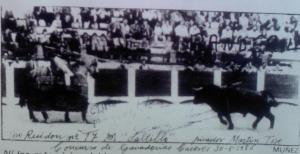 Ruidon-17 chargeant au galop face au picador Martin Toro