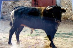 Ruidon, indultado por Ruiz Miguel