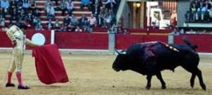 Fandino et Duermevela, dans les arènes de Zaragoza