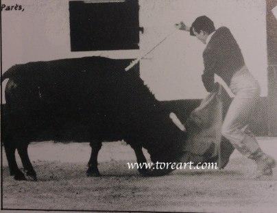 José Maria Manzanares simulando la suerte suprema ante Jaquerito-60, indultado en Samadet (Francia.) Fotografia publicada en Le Courrier de Ceret.