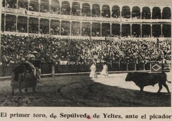 Un ejemplar de Sepulveda, arrancandose al caballo durante la corrida concurso de ganaderias celebrada en Salamanca en 1973. Fotografia El Ruedo.
