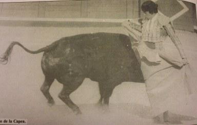 El Nino de la Capea toreando por chicuelinas a Pajarero de Sepulveda, ganador del premio Toro de Oro de la feria de 1984 de Salamanca. Fotografia Aplausos.