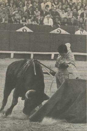 Paco Camino dibujando un excelente natural ante un toro de Sepulveda. Fijeza, humillacion, rectitud en la embestida son algunas de las virtudes que permite vislumbrar esta fotografia publicada en El Ruedo.