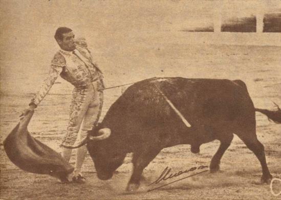 Arrogante actitud de Gregorio Sanchez dibujando un espectacular derechazo ante un entregado ejemplar de Sepulveda en Linares, el 29 de agosto de 1957. Fotografia El Ruedo