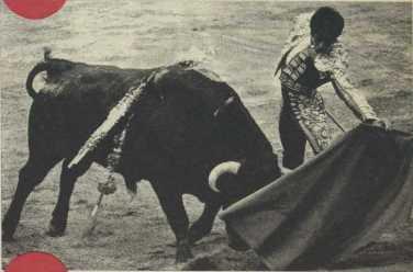 El Nino de la Capea con Idiota de Sepulveda al que corta las dos orejas el 12 de junio de 1975. Fotografia El Ruedo.