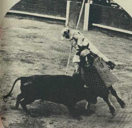 Brava pelea de uno de los toros lidiados por Sepulveda el día de su debut en Las Ventas. Fotografía El Ruedo