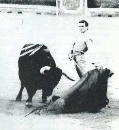 Magnifico natural de Espartaco en Pamplona en 1992.