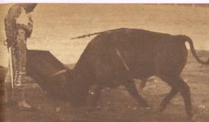 El viti el dia de su éxito en Plasencia, el 9 de junio de 1962. Fotografia El Ruedo.