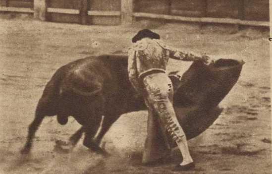 Rafael Ortega con Bachiller, toro con el que triunfó en Salamanca el 21 de septiembre de 1951. Fotografia El Ruedo
