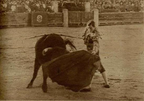 Pepin Martin Vazquez toreando a Abulillo en Toledo (1947), un nuevo hijo sobresaliente del semental Presidente. El diestro le corta los máximos trofeos.