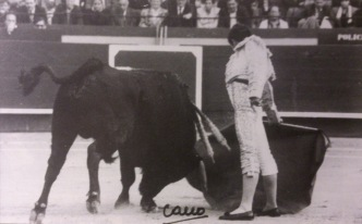 Manolo Carrion con el buen Hospedero-28 de Sepulveda : con este toro, recibió la alternativa en marzo de 1994 en Valencia. Fotografia Cano.
