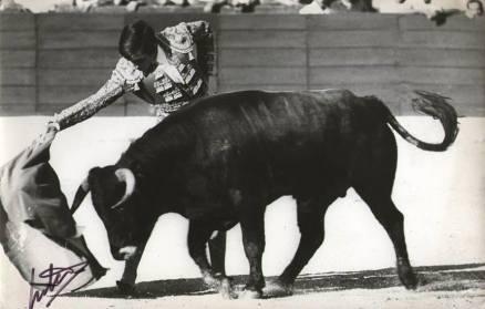 Carlos Aragon Cancela, el dia de su debut en novillada sin picadores en Colmenar Viejo.