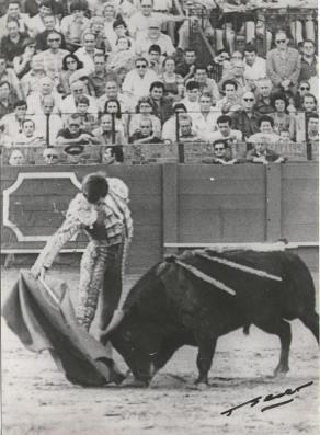 Espléndido derechazo de Carlos Aragon Cancela en Sevilla, ante un utrero de Juan Pedro Domecq.